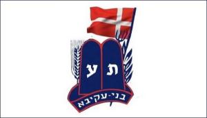 Bnei Akiva logo